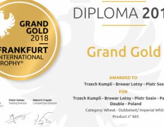 Miniatura artykułu - 5 Medali dla 3 Kumpli, czyli Frankfurt International Trophy